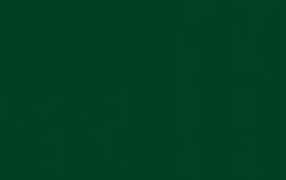 Окно WDS Зеленый Лесной